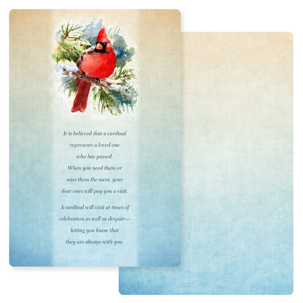 """6"""" x 9"""" Cardinal in the Pines PMC Album, The Visitor"""