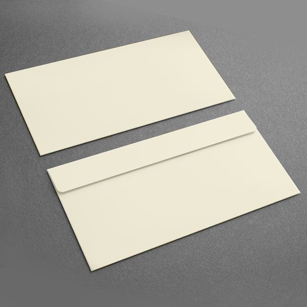 Small Presentation Card Envelope, Soft White