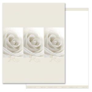 White Rose 3-up MP