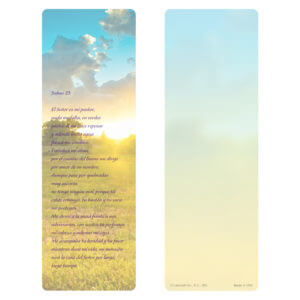 "3"" x 9"" Summer Field PMC, Salmo 23"