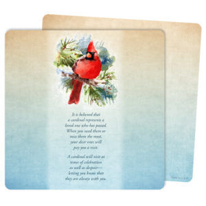 Cardinal in the Pines Mini-Album, The Visitor