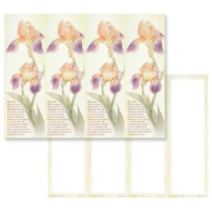 Dutch Iris 4-up Micro-Perf, Lord's Prayer